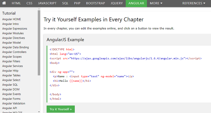 angularjs tutorial your first